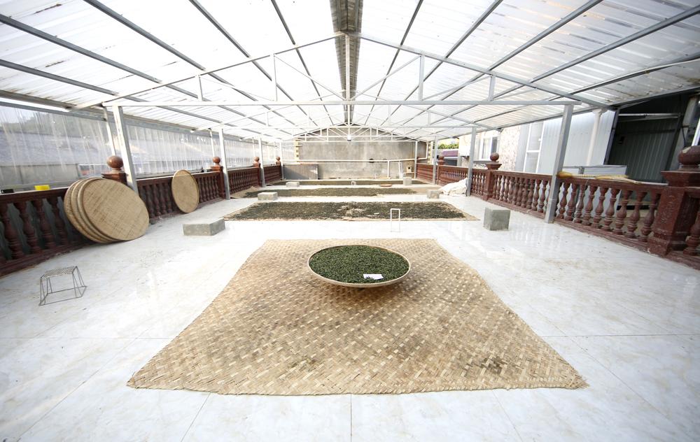 中吉号云南冰岛茶厂(二)