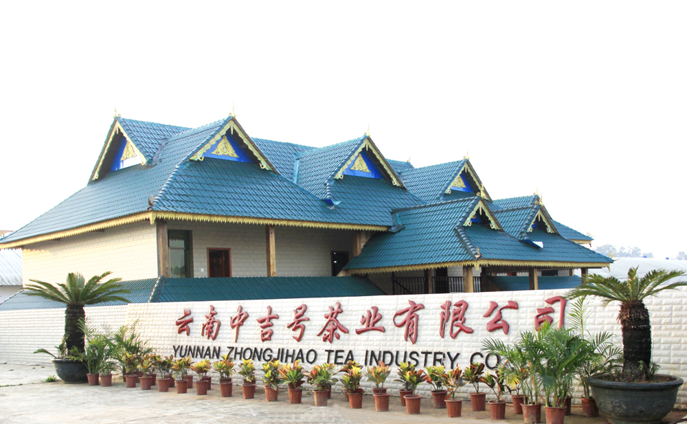 中吉号云南西双版纳勐海茶厂(一)