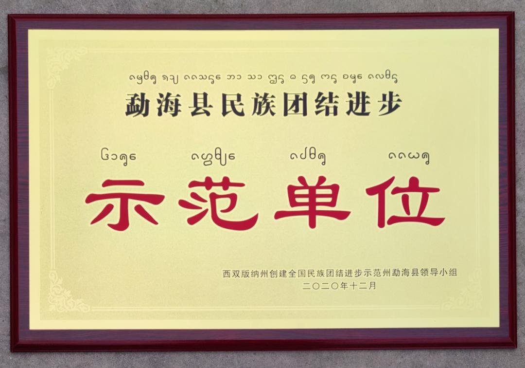 勐海县民族团结进步示范单位